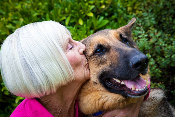 Senior lady kisses her best friend stock photo