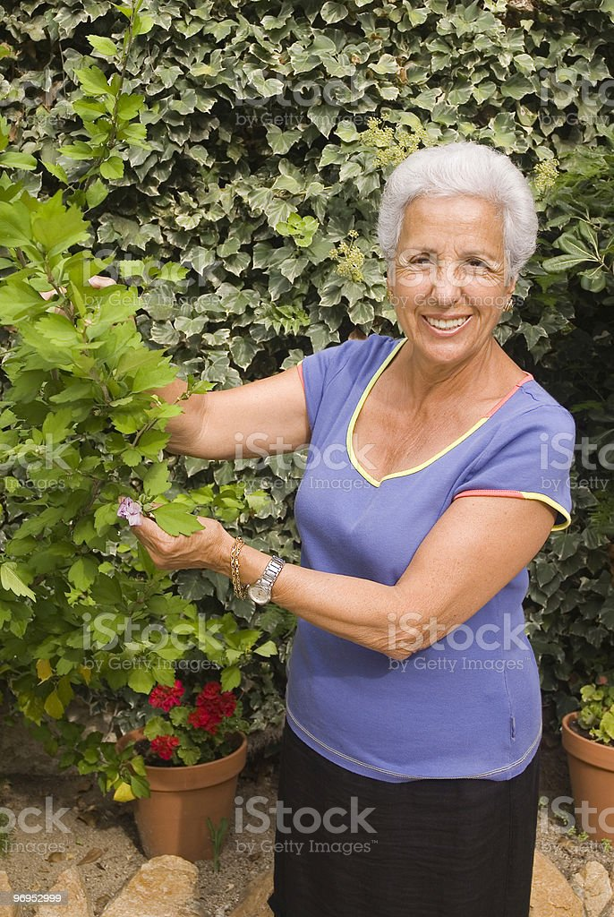 senior lady looking after her plants royalty-free stock photo
