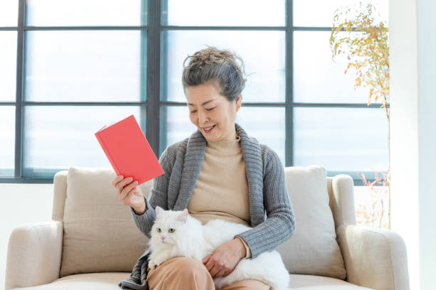 Senior lady looking at white cat on her knee stock photo