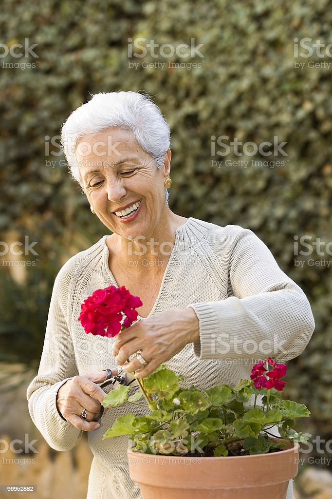 senior lady pruning her plants royalty-free stock photo