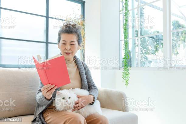 Senior lady reading a book with white cat picture id1147030374?b=1&k=6&m=1147030374&s=612x612&h=0645u kkjvk57kzhzxl 0j4piivggeil8cv 0iivgl4=
