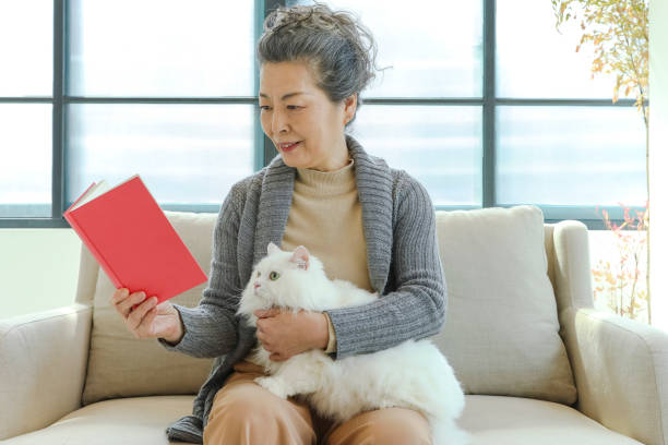 Senior lady reading a cat and a book stock photo