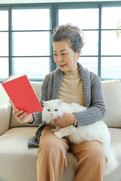 Senior lady with white cat and reading a book stock photo