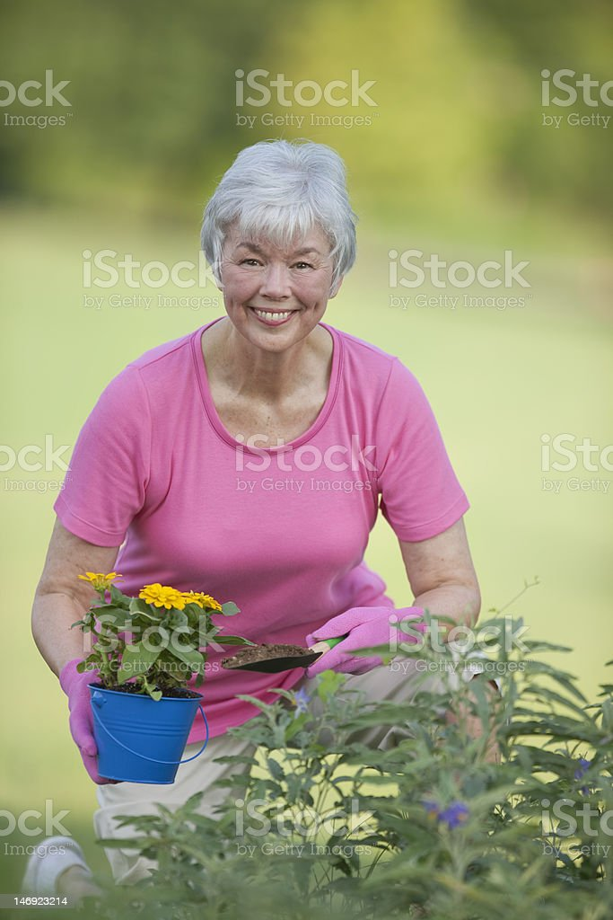 Senior Lady Working In Flower Garden royalty-free stock photo