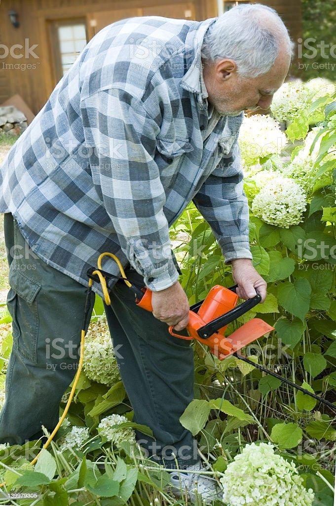 senior lifestyle 3 stock photo