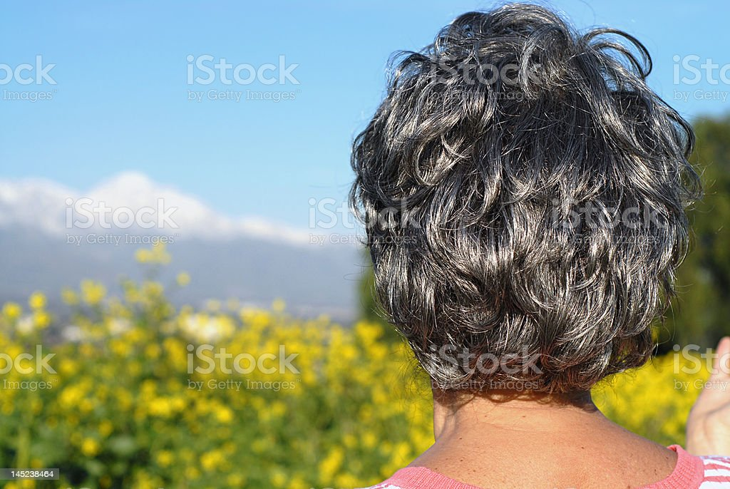 Senior looking out royalty-free stock photo