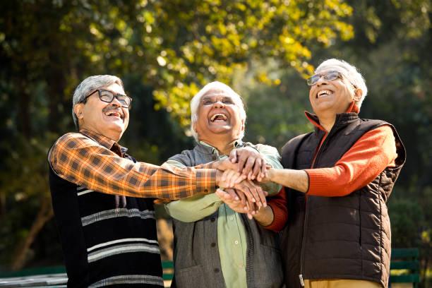 Senior male friends having fun at park stock photo