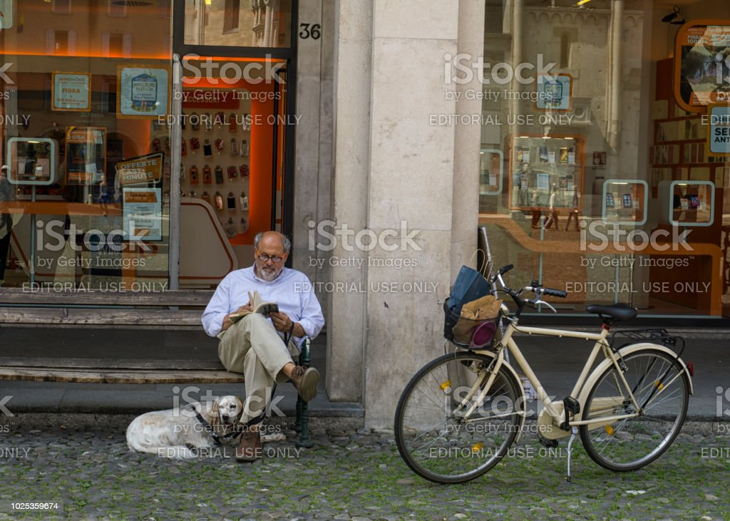 Senior male sitting on a bench reading with a dog at his side stock photo