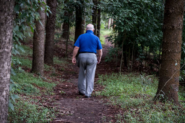 Senior male walks away from camera down a forest path. stock photo