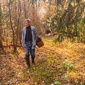 Senior man picking wild mushrooms. Belarus, Eastern Europe.