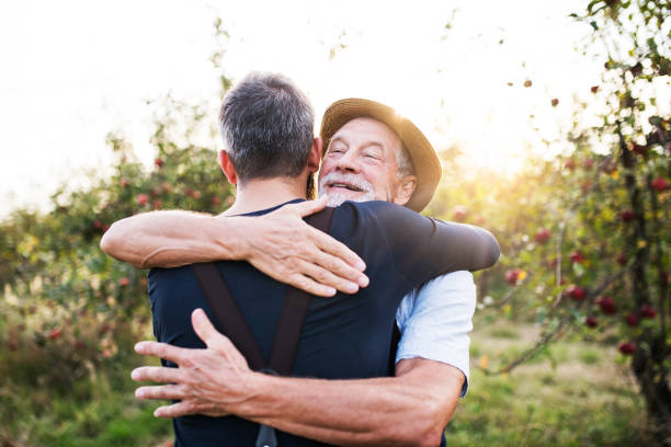 A senior man and adult son standing in apple orchard in autumn, hugging. stock photo