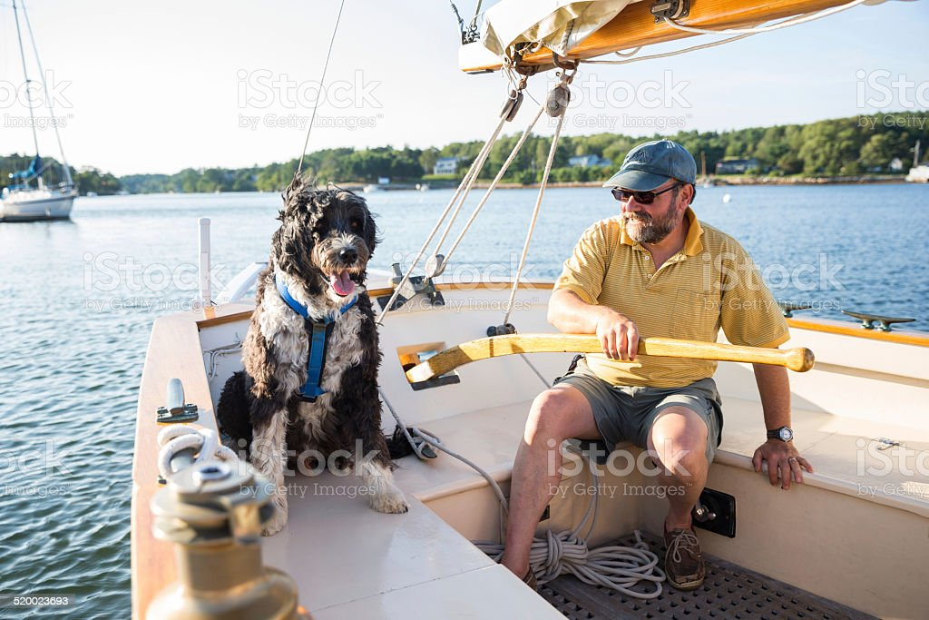 Senior Man and his Dog stock photo