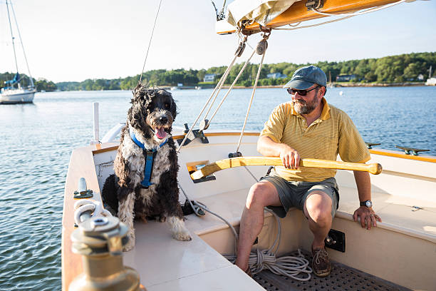 alter mann und sein hund - senior bilder wasser stock-fotos und bilder