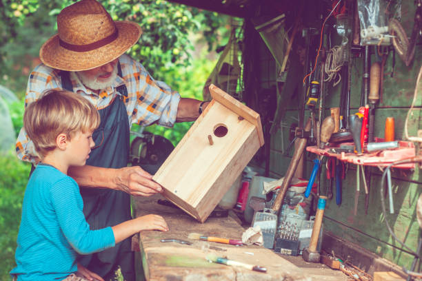 Senior man and his grandson make birdhouse stock photo