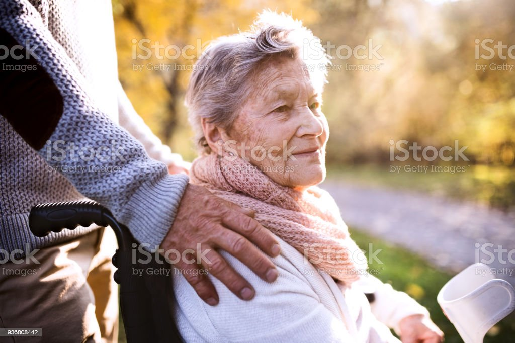 Senior man and woman in wheelchair in autumn nature. stock photo