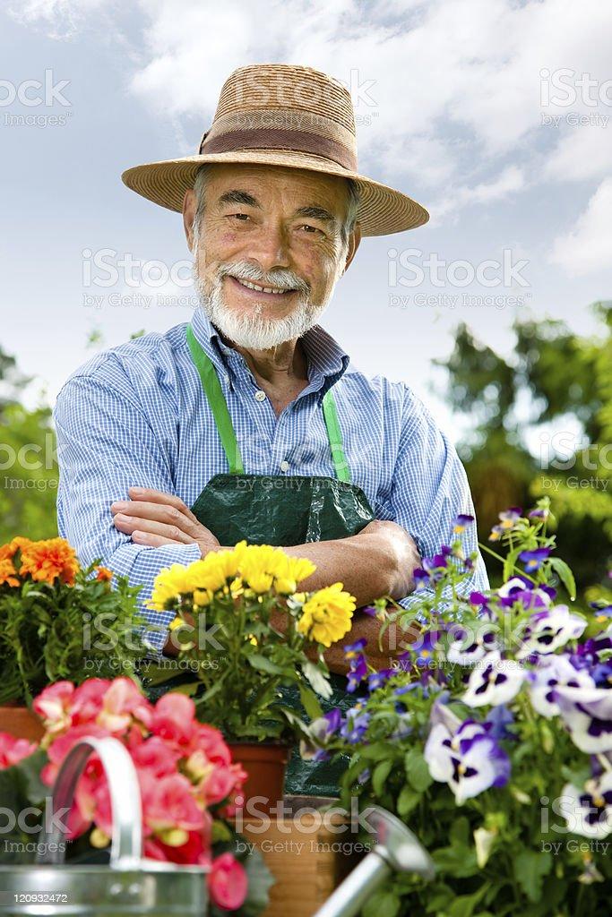 Senior Mann Gartenarbeit – Foto