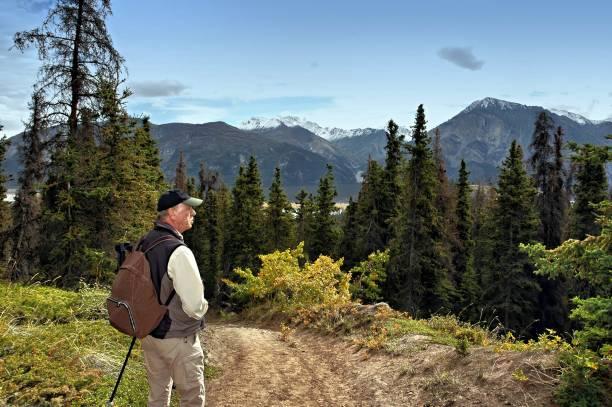 senior man hiking in kluane national park, yukon,canada - заповедник дикой природы стоковые фото и изображения