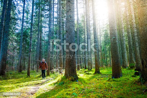 Senior Man Hiking in the Alps in the Forests of Lago di Fusine (Lake Fusine), Italy. Europe. All logos removed. Nikon.