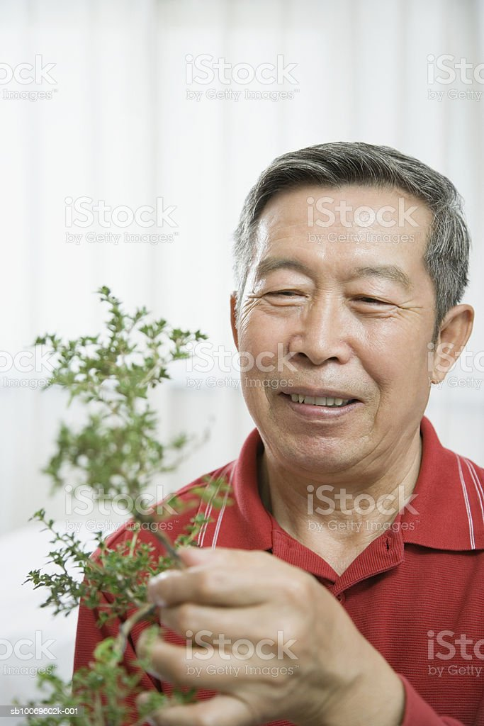 Senior man holding plant, smiling foto stock royalty-free