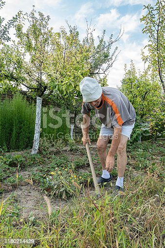 Older Man with Hat Digging Up with Shovel in his Garden. Senior Farmer is Doing Agricultural Activities at the Backyard of his House.
