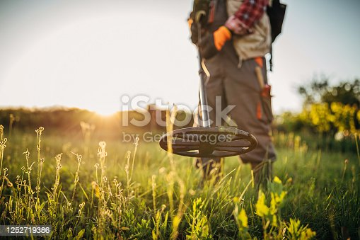 istock Senior man looking for treasures with the metal detector 1252719386
