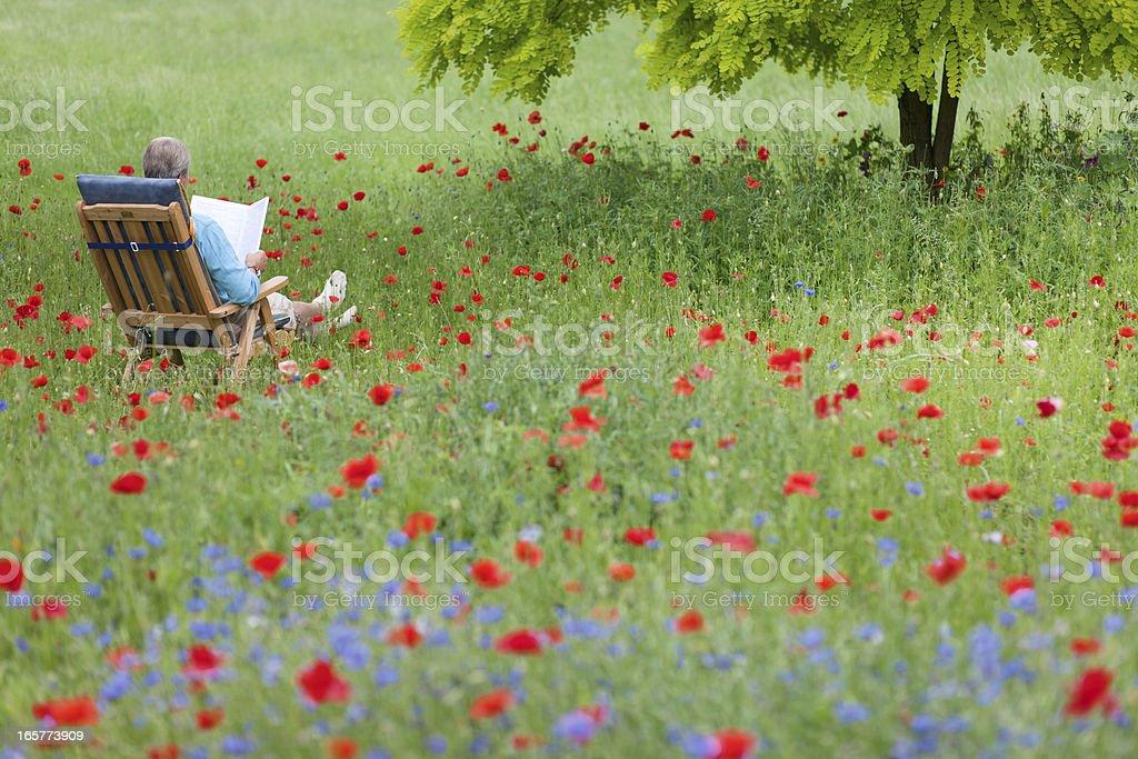 Alter Mann Auf Dem Liegestuhl Liegen Im Garten Und Liest Ein Buch