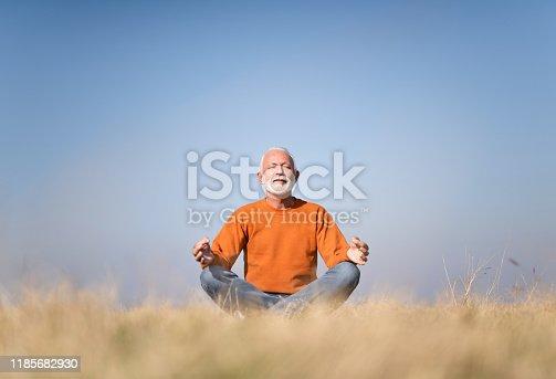 Senior man meditating in nature.