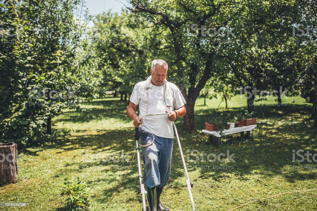 Senior man mowing the lawn stock image. Image of joyfully