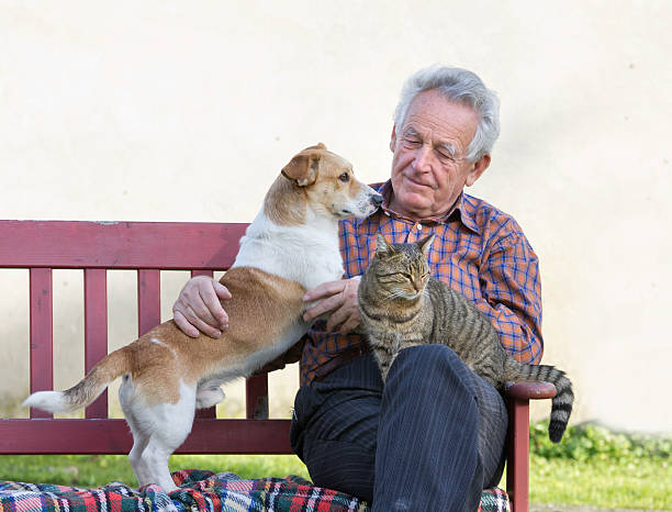 Senior man on a park bench with his dog and cat picture id454947417?b=1&k=6&m=454947417&s=612x612&w=0&h=ix sckspf6rqgvhubuwagspfzgviiahdnkcckhvjtlq=