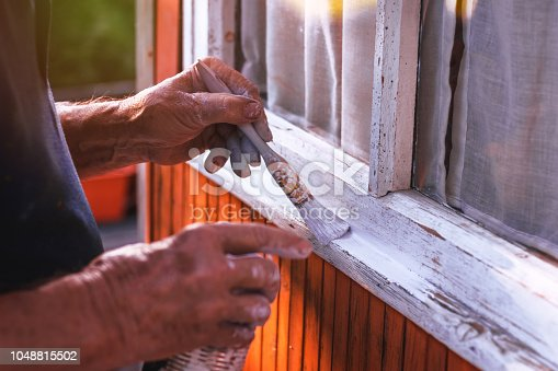 istock Senior man painting wooden windows using paintbrush. Repairing exterior of old house. 1048815502