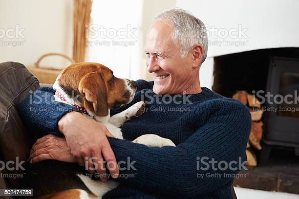 Senior man relaxing at home with pet dog picture id502474759?b=1&k=6&m=502474759&s=612x612&h=rzfztc4sdzbwx7wisfze8sigb8shvsobwcyeqouwlhc=