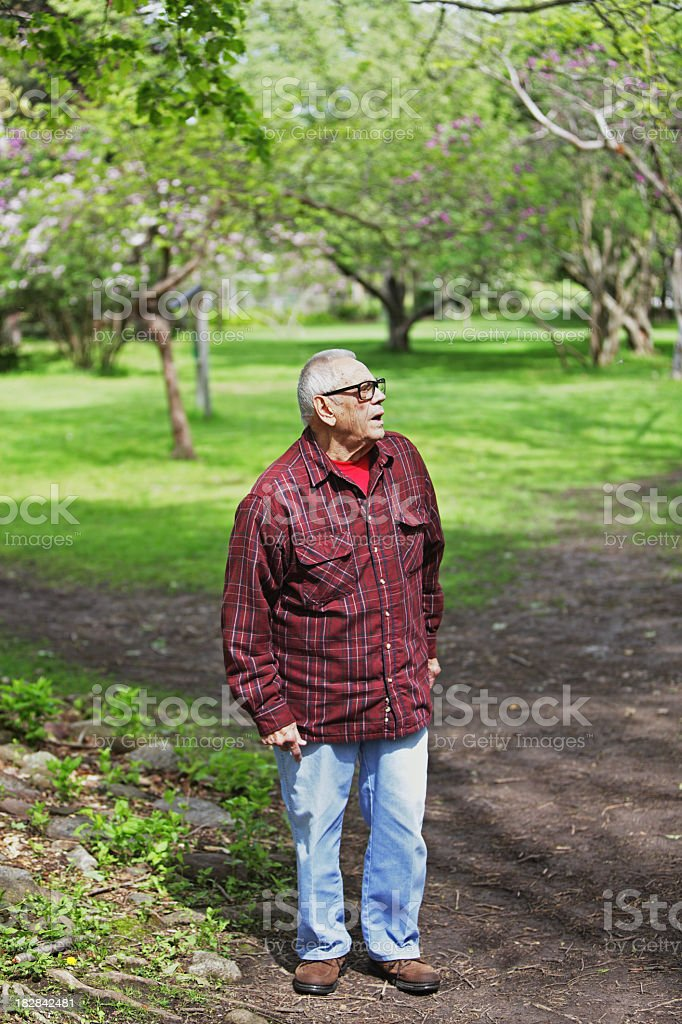 Senior Man Searching in Nature Park stock photo