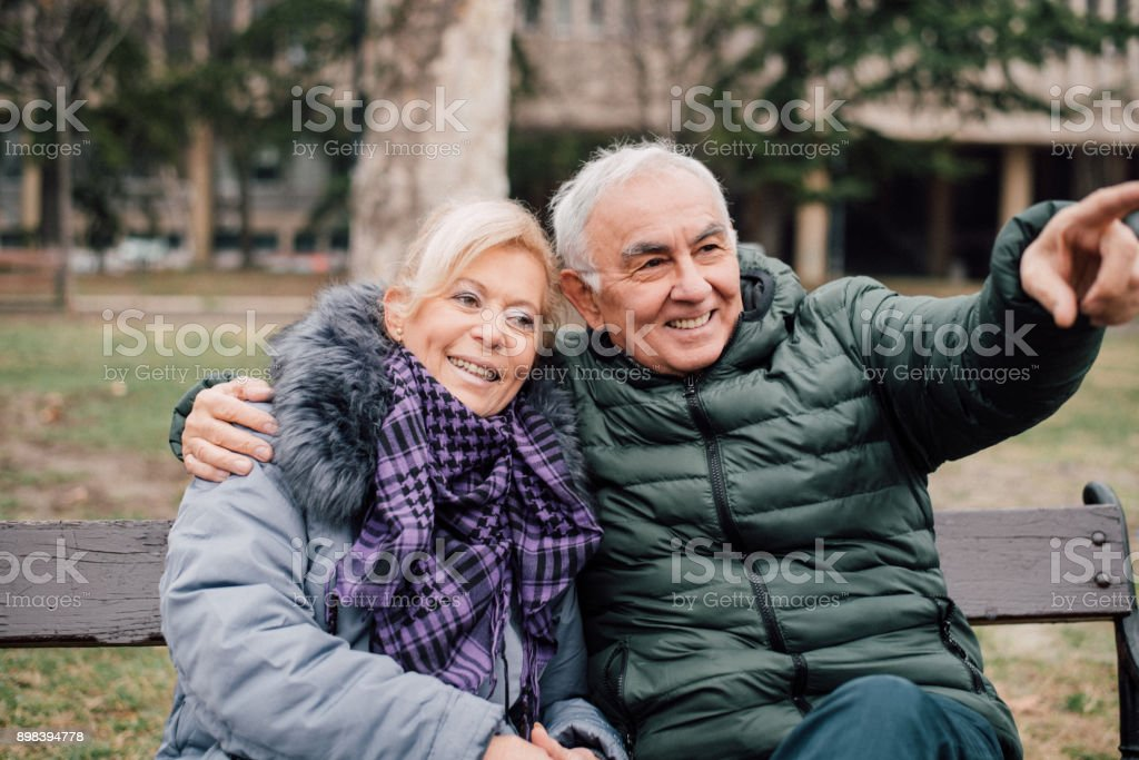 Senior man showing something in the distance to a senior woman while sitting on a bench in a park. stock photo