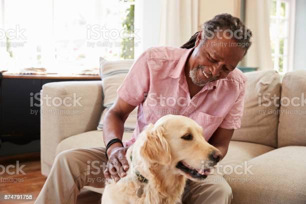 Senior man sitting on sofa at home with pet labrador dog picture id874791758?b=1&k=6&m=874791758&s=612x612&h=wrbunigfvyaiy6saue9wwa9fhmaexiuurxilhitvo6e=