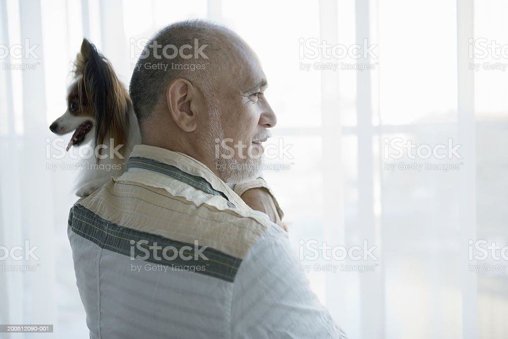 Senior man standing beside window, carrying dog, rear view royalty-free stock photo