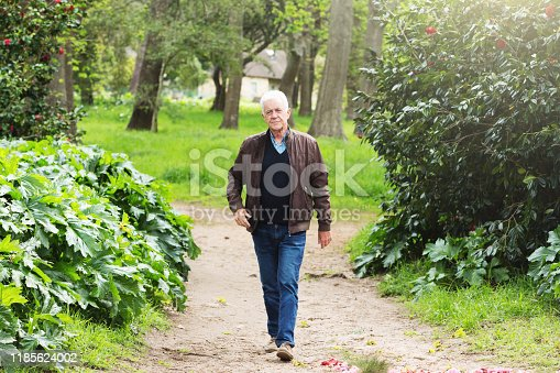 A senior man strides energeticaly through winter woods.