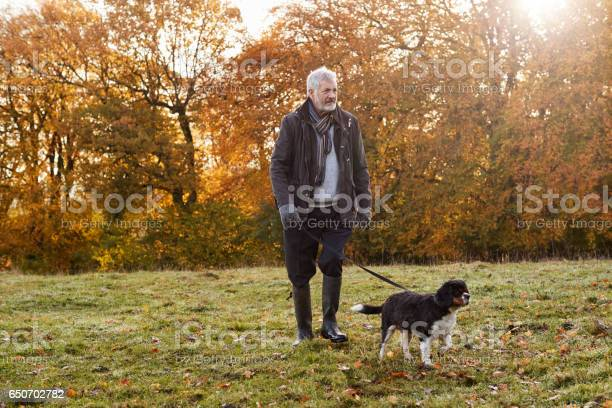 Senior man taking dog for walk in autumn landscape picture id650702782?b=1&k=6&m=650702782&s=612x612&h=y zvq77 bbu om39u79pbmli8bqdmabeihn aas5kxu=