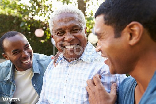 istock Senior man talking with his adult sons in garden, 638287776