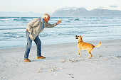 A senior man holds a ball as he prepares to throw it for his excited dog on a sandy beach.