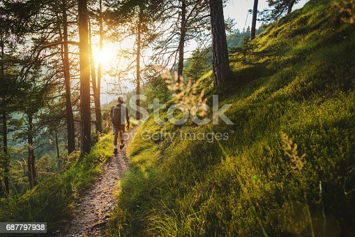 Senior man trail hiking on high mountain, in a green forest