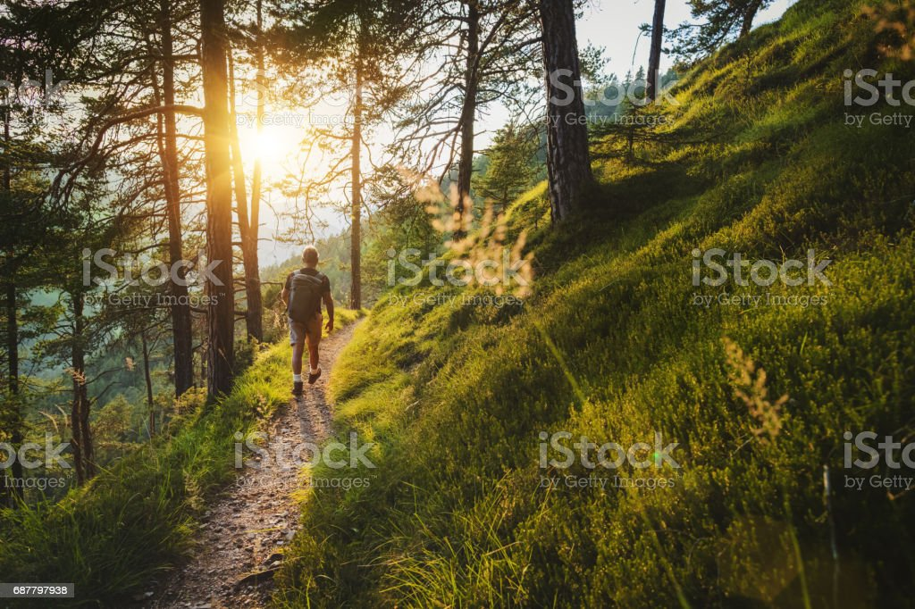Senior man trail hiking in a mountain forest stock photo