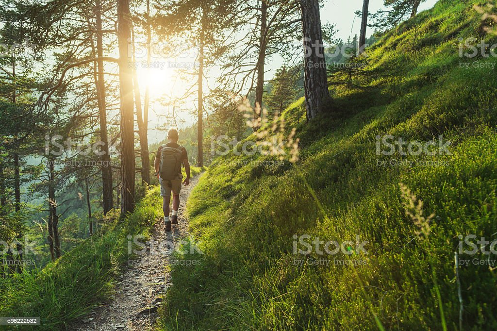Senior man trail hiking in the forest at sunset stock photo