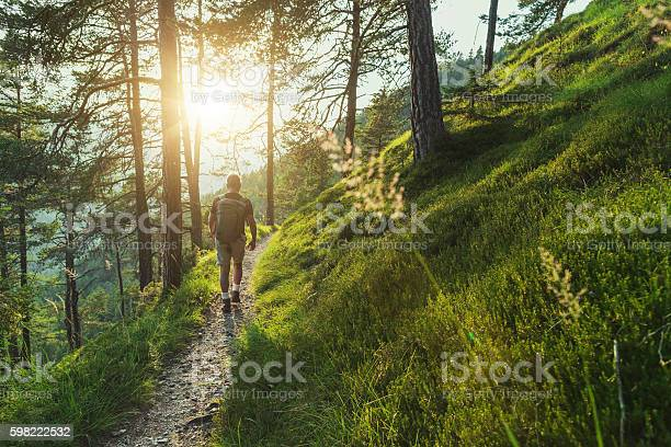 Photo of Senior man trail hiking in the forest at sunset