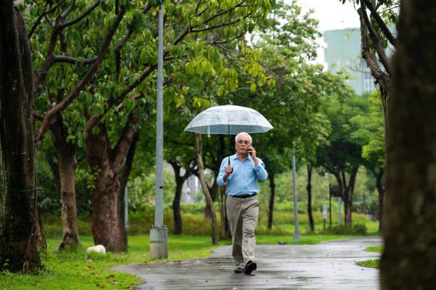 senior mann mit telefon im park während der regenzeit - regenzeit stock-fotos und bilder