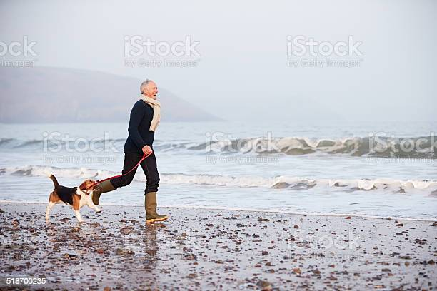 Senior man walking along winter beach with pet dog picture id518700235?b=1&k=6&m=518700235&s=612x612&h=sjqbxskpqewa0f0nasp51uoyi6 agyq0v3t7enbxbbc=