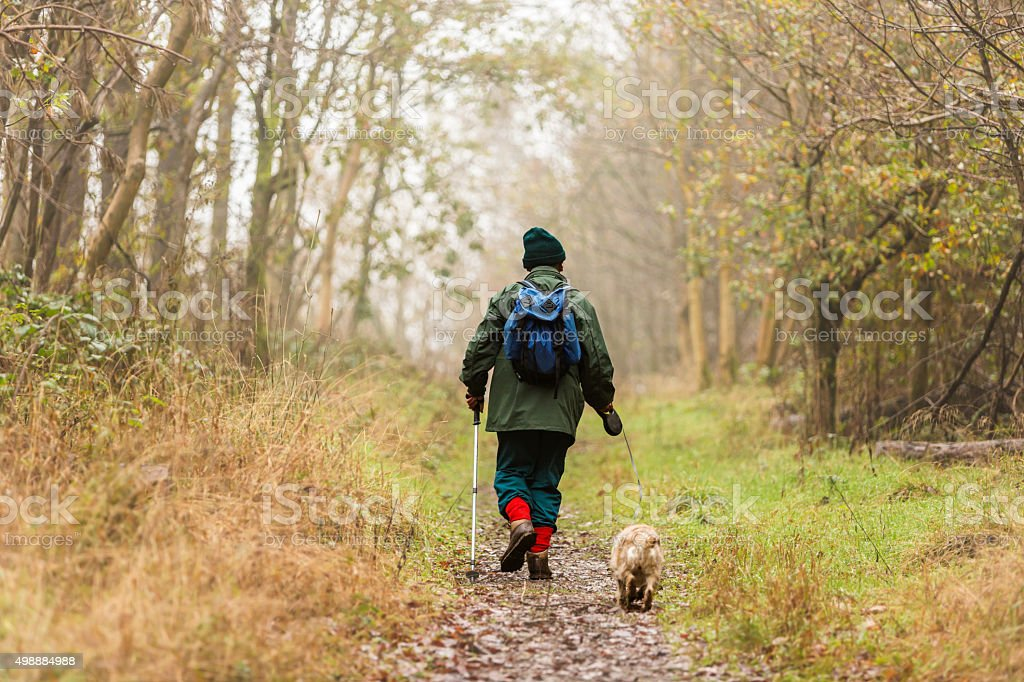 Senior Man Walking his Dog in the Woods stock photo
