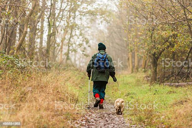 Photo of Senior Man Walking his Dog in the Woods