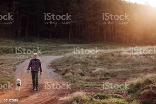 Senior man walking his dog picture id1051175878?b=1&k=6&m=1051175878&s=612x612&h=zlozge2yjsjzfkkxt2x9bsputgqp76slhlcgdj y4k4=