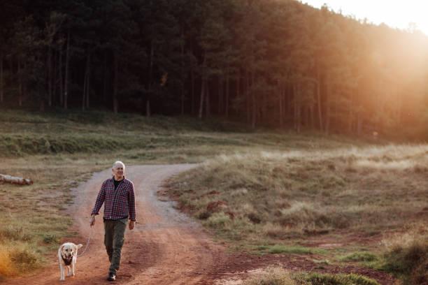 Senior man walking his dog picture id1051176806?b=1&k=6&m=1051176806&s=612x612&w=0&h=vdzjoy2m4ldsof91i6mm0vaa3nt975n2vx0ij8n7c30=