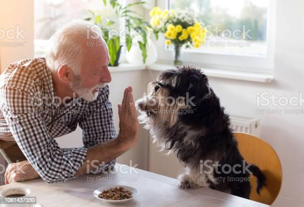 Senior man with dog picture id1061437330?b=1&k=6&m=1061437330&s=612x612&h=n fy1ipvlpz7bd0pi8eytstwblaymcefm5id6 b6y2k=